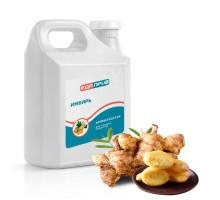 Ароматизатор пищевой жидкий Имбирь пряный для маринадов, кулинарных блюд