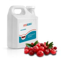 Ароматизатор пищевой жидкий Клюква кислый для напитков