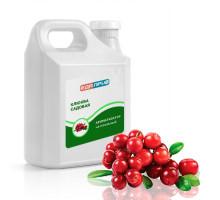 Натуральный ароматизатор пищевой жидкий Клюква садовая концентрированный