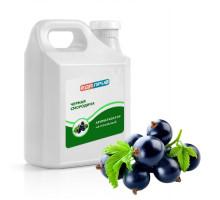 Натуральный ароматизатор пищевой жидкий Черная смородина ягодный