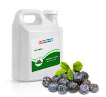 Натуральный ароматизатор пищевой жидкий Черника ягодный