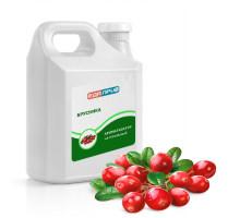 Натуральный ароматизатор пищевой жидкий Брусника лесной