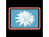 Термотрансферные этикетки (12)